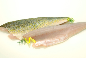 Walleye fillets